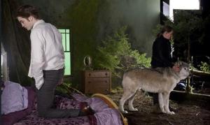 Robert preparándose para una escena, al lado un lobo (Abril 23, 2009)